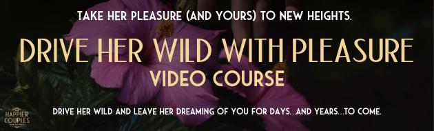 Drive Her Wild Banner